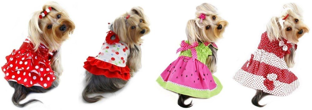 Dog dresses for your pet
