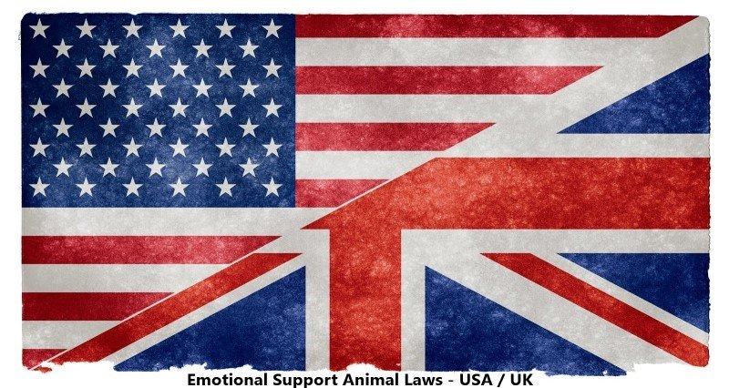 ESA laws US-UK