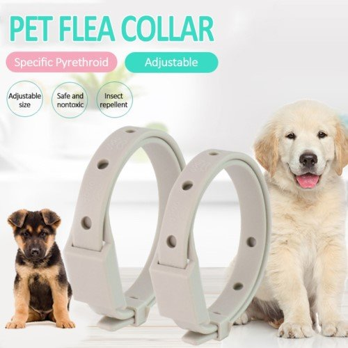Flea collars for dogs
