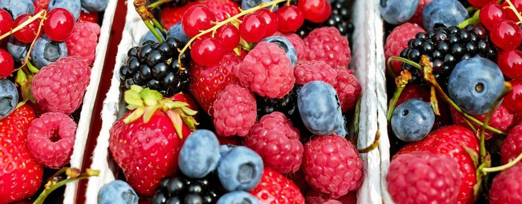 Fresh forest fruits