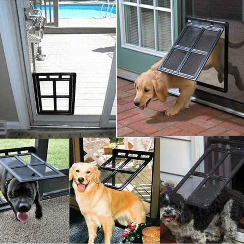 Dog door training
