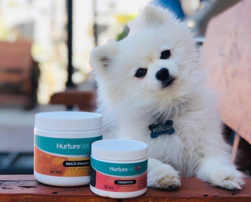 Multi vitamin and probiotics for dogs