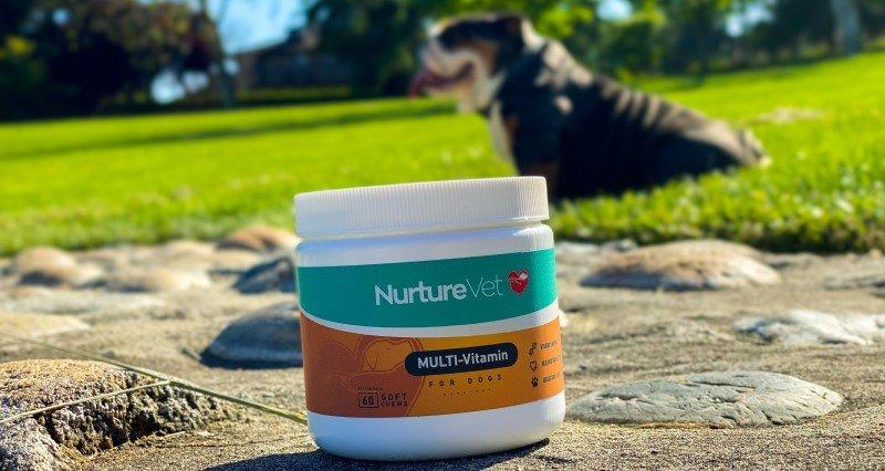 Multivitamin for dogs, NurtureVet